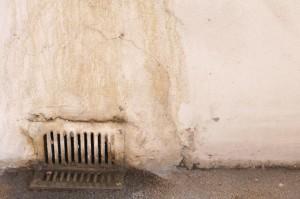 Plíseň v domácnosti: postup, jak se jí účinně zbavit